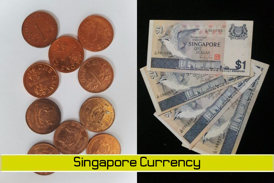 Singapore Currency - FAMILY SG